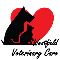 Westfield Veterinary Care dog and cat silhouette next to a heart